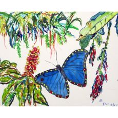 Morpho & Flowers Place Mat Set Of 4