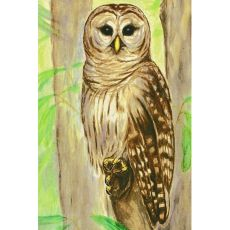 Owl Outdoor Wall Hanging 24X30