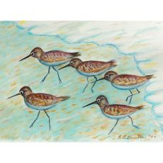 Sandpipers Outdoor Wall Hanging 24x30