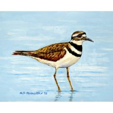 Killdeer Outdoor Wall Hanging 24X30