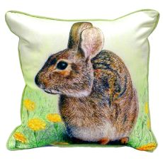 Rabbit Extra Large Zippered Pillow 22X22