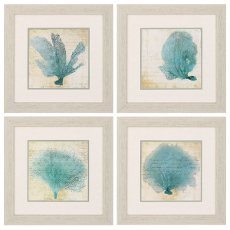 Blue Coral Framed Art Set Of 4