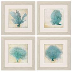 Blue Coral Framed Art Set of 4