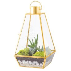Personalized Gold Metal Terrarium