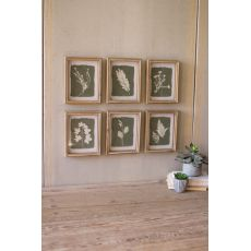 Fern Prints Under Glass, Set of 6