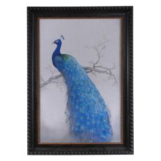 Peacock Blue 2 Framed Print