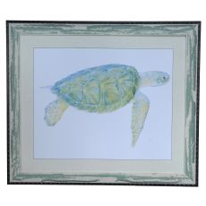 Sea Turtle 1 Framed Print