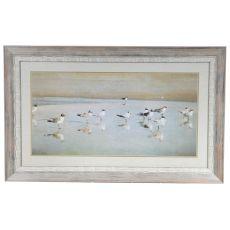 Coastal Reflections Framed Print