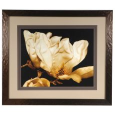Buttercream Magnolia  2 Framed Print