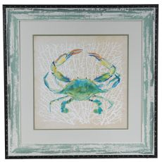 Sealife Crab Framed Print