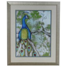 Peacock Reflections 2 Framed Print