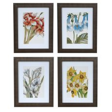 Restfull Gaze 1,2,3,4,Set 4 Framed Print