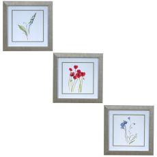 Floral Delights 1,2,3, Framed Print
