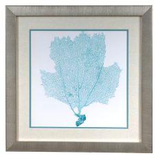 Sea Fan 3 Framed Print