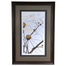 Willow Blossom 1 Framed Print