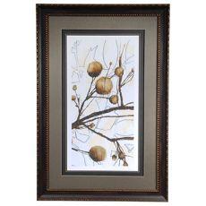 Willow Blossom 2 Framed Print