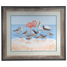 Seabird Summit Framed Print
