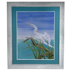 Seabirds 1 Framed Print