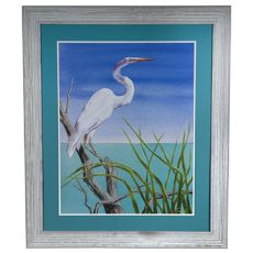 Seabirds 2 Framed Print