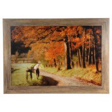 Autumn'S Morning Framed Print