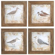 Shore Birds 1,2,2,&4 (Set 4) Framed Print