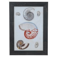 Seashore Notes 1 Domestic Wall Art