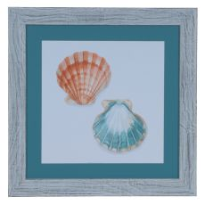Watercolor Shells 1 Domestic Wall Art