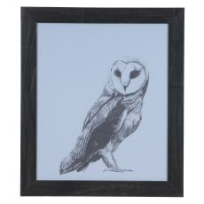 Owl Domestic Wall Art
