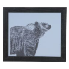 Grizzly Domestic Wall Art