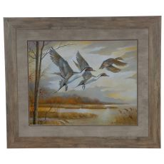 Pintails Domestic Wall Art