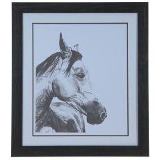 Horse Snapshot 2 Framed Print