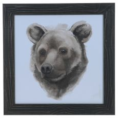 Animal Study (Bear) Framed Print