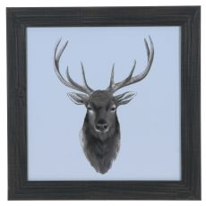 Animal Study (Elk) Framed Print