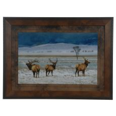 Refuge Elk Framed Print