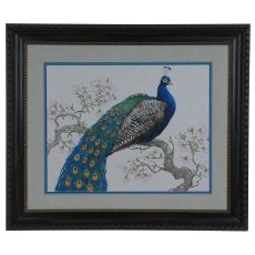 Peacock Blossoms 1 Framed Print