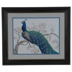 Peacock Blossoms 2 Framed Print