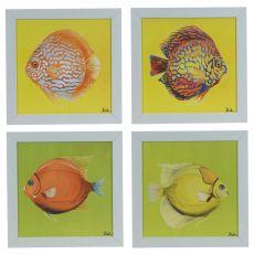 Bright Aquatic Life (Set Of 4) Framed Print