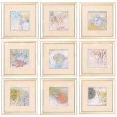 Coastal Cameo Framed Art Set Of 9