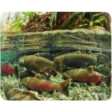 Coho Salmon #2 Cutting Board