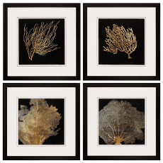 Coral Framed Art Set Of 4