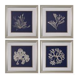 Seaweed On Navy I, II, III, IV - Fine Art Giclee Under Glass