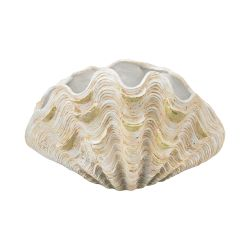 Cretaceous Clam Shell