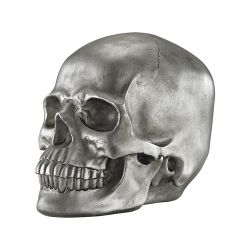 Knell Silver Skull