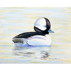 Bufflehead Duck Flag 12.5X18