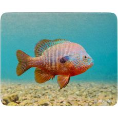 Longear Sunfish  Cutting Board