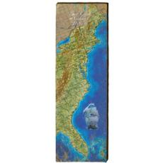 East Coast Seaboard Wood Wall Art