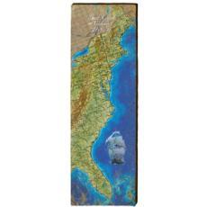 East Coast Seaboard Wood Wall Art