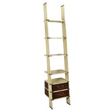Library Ladder, Ivory