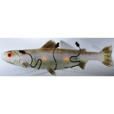"29"" W Metro Fusion Rainbow Trout Wall Sconce"