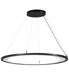 "49""L Anillo Ellipse Oblong Pendant"